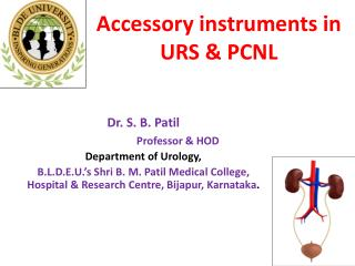 Accessory instruments in  URS & PCNL