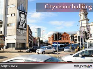 City vision bullring