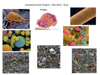 Lionwood  Junior Project – Nov 2012 - Dust