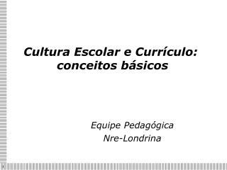 Cultura Escolar e Curr culo:  conceitos b sicos