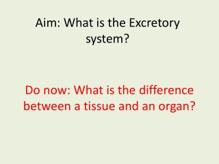 Aim: What is the Excretory system?