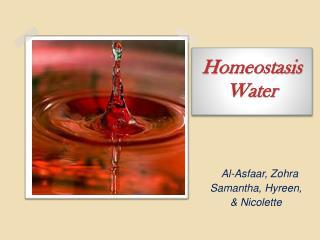 Homeostasis Water