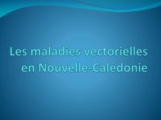 Les maladies vectorielles en Nouvelle-Calédonie