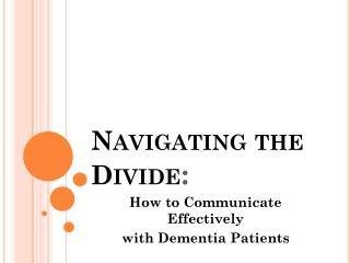 Navigating the Divide :