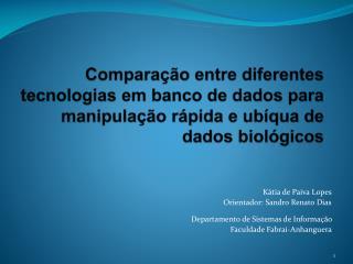 Kátia de Paiva Lopes Orientador: Sandro Renato Dias Departamento de Sistemas de Informação