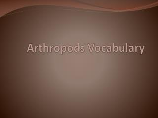 Arthropods Vocabulary