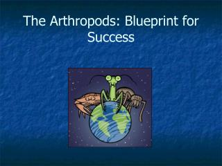 The Arthropods: Blueprint for Success