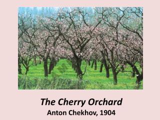 The Cherry Orchard  Anton Chekhov, 1904