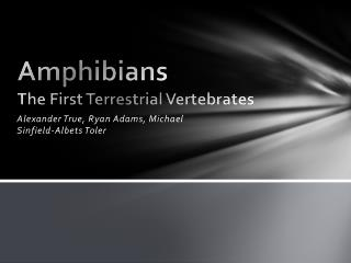Amphibians The First Terrestrial Vertebrates
