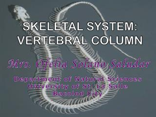 SKELETAL SYSTEM: VERTEBRAL COLUMN