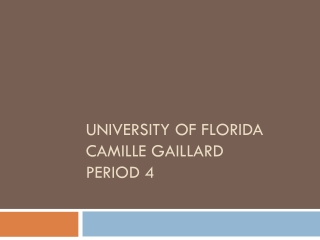 Camille Gaillard College Project Period 4