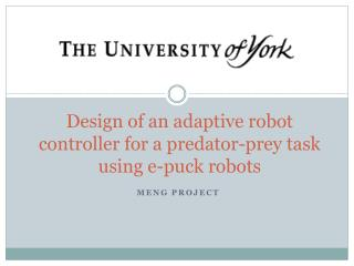 Design of an  adaptive  r obot  controller for a predator-prey task using e-puck robots