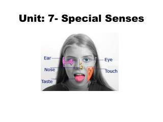 Unit: 7- Special Senses