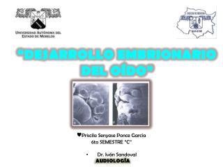 """""""DESARROLLO EMBRIONARIO  DEL OÍDO"""""""