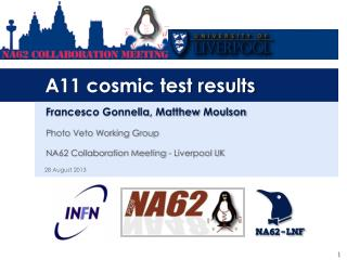 A11 cosmic test results