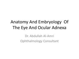 Anatomy And Embryology  Of The Eye And Ocular Adnexa