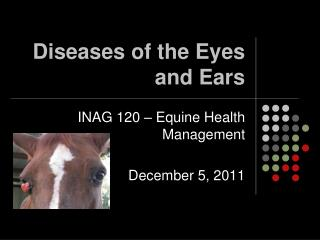 Diseases of the Eyes and Ears