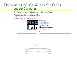 Dynamics of Capillary Surfaces