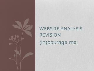 Website Analysis:  Revision