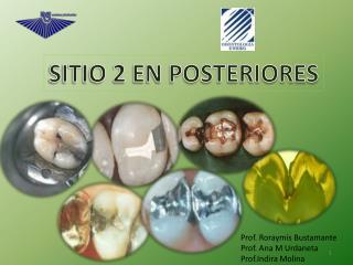 SITIO 2 EN POSTERIORES