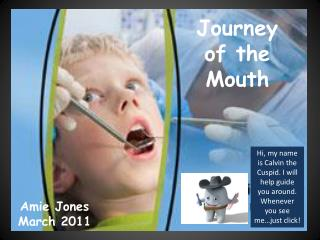 Journey of the Mouth