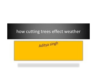 how cutting trees effect weather