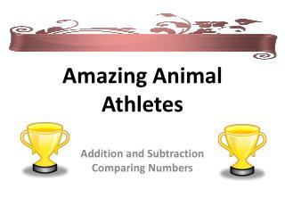 Amazing Animal Athletes