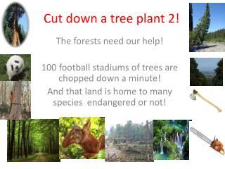 Cut down a tree plant 2!