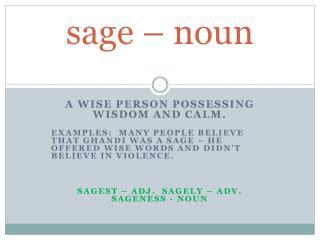 sage – noun