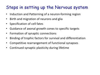 Steps in setting up the Nervous system