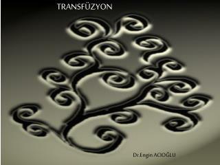 TRANSF ZYON
