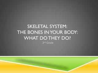 Skeletal System: The bones in your body: what do they do?