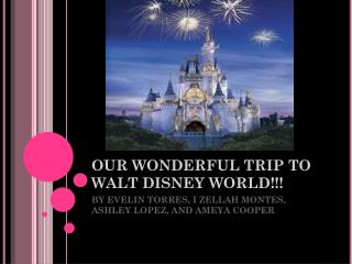 OUR WONDERFUL TRIP TO WALT DISNEY WORLD!!!