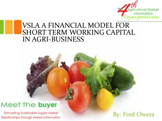 VSLA  A FINANCIAL  MODEL FOR SHORT TERM WORKING CAPITAL IN AGRI-BUSINESS