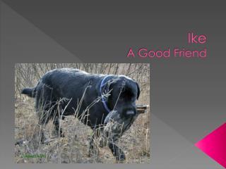 Ike A Good Friend