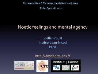 Metacognition  &  Metarepresentation  workshop  Oslo  April 28, 2014