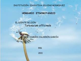 INSTITUCIÓN  EDUCATIVA SILVINO RODRIGUEZ