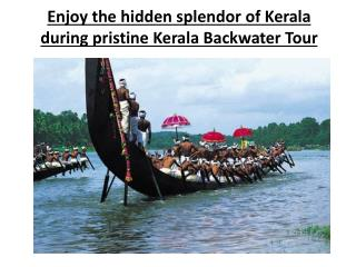 Enjoy the hidden splendor of Kerala during pristine Kerala B