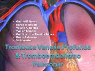 Gabriel F. Neves Karen M.  Bobato Valéria A. Santos Yvelise Truppel Caroline L. de Almeida Torres