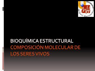 Bioquímica ESTRUCTURAL Composición molecular de  los seres vivos