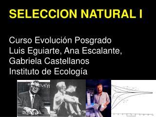 SELECCION  NATURAL  I Curso Evolución Posgrado