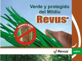 FICHA TECNICA Nombre comercial:  REVUS 250 SC Ingrediente activo: Mandipropanid