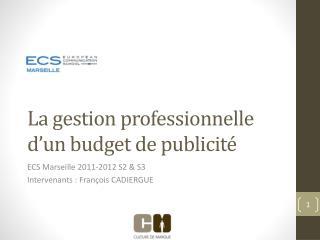 La gestion professionnelle d'un budget de publicité