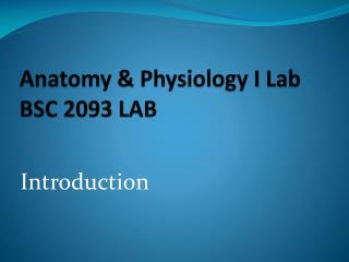 Anatomy & Physiology I Lab BSC 2093 LAB