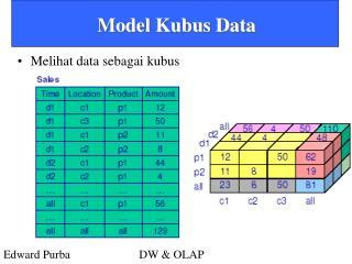 Model Kubus Data