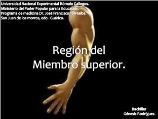 Región del Miembro superior.
