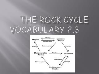 the Rock  CyclE V ocabulary 2.3