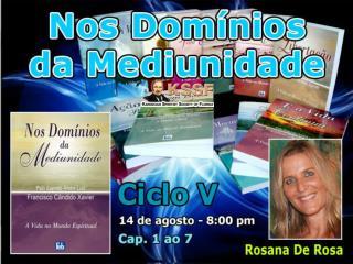 NOS DOMÍNIOS DA MEDIUNIDADE Capítulos  1  ao  7 Aug 14, 2013 Ciclo  V