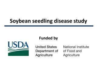 Soybean seedling disease study