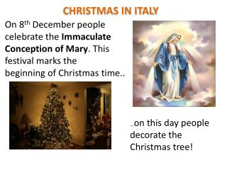 � on  this day people  decorate �the Christmas  tree!